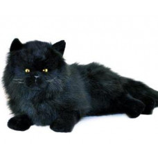 Black Plush Cat Lying